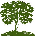 Logo_Arbol_72dpi